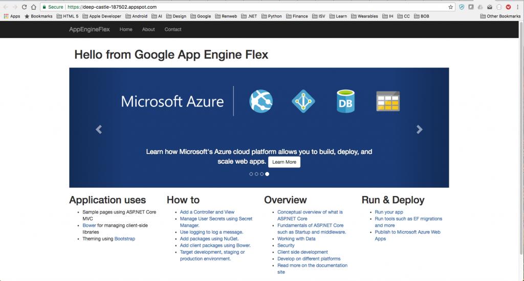 Running on Google App Engine Flex